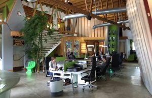 Office Fit Outs Help You to Decor a Dream Place to Work in