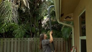 Gets the Best Gutter Cleaning Tips from Experts