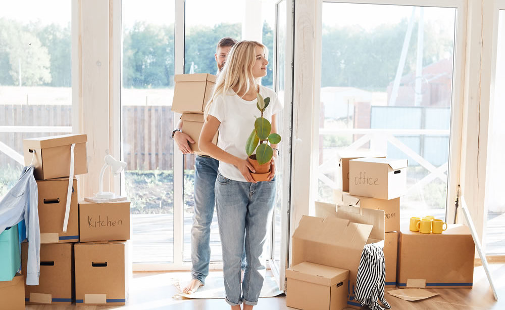 How Professional Help Efficiently Done Removal Jobs